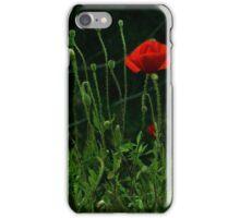 poppies in a nighty garden iPhone Case/Skin