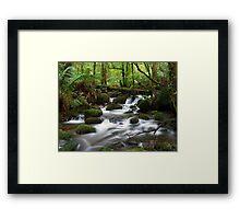 Cement Creek Framed Print