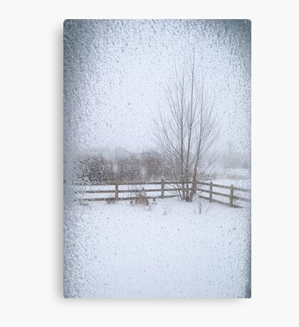 Belated Winter Canvas Print