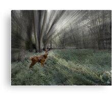 Sunlit Moment in a Floodplain Vale Canvas Print