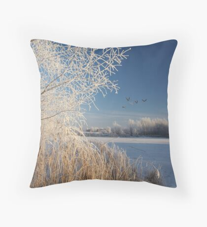 Frosty & Clear Throw Pillow