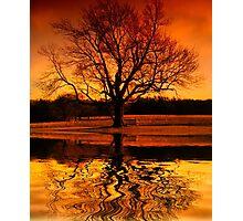 Sunset Thinking Photographic Print