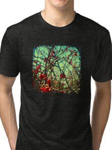 Blossom Frenzy - TTV Tri-blend T-Shirt