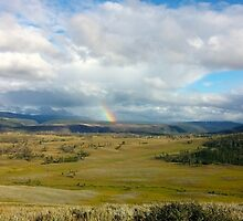 Rainbow  by GeorgieGipps