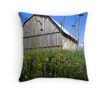Barn and meadow Throw Pillow
