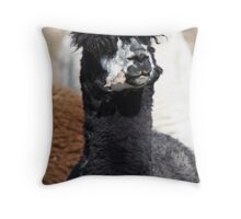 Heck Of A Hair Day! Throw Pillow