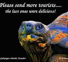 Please Send More Tourists - Tortuga by Al Bourassa