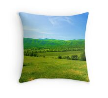 Tennessee Heaven Throw Pillow