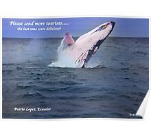 Please Send More Tourists - Humpback Whale Poster
