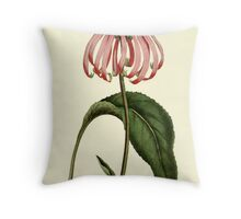 Purple Rudbeckia Flower Botanical Throw Pillow
