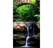 Nature's Firmament Photographic Print