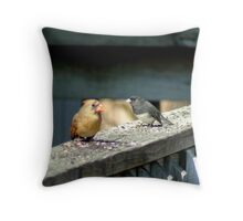 032609-36  DISCUSSION Throw Pillow