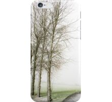 Light Snow iPhone Case/Skin