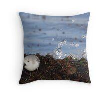Splash (Sanderling) Throw Pillow