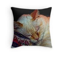 Kitty in the Yarn Shop Throw Pillow