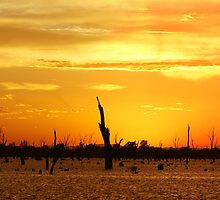 Yarrawonga Pano by Simon Dallinger