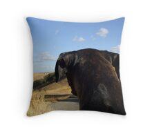 Boxer dog overlooking the horizon Throw Pillow