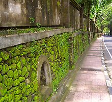 The Walkway - Bali by IntrepidTravel
