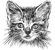 Cat art Photographic Print