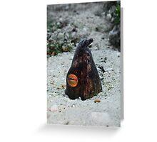 Snake Eel Greeting Card