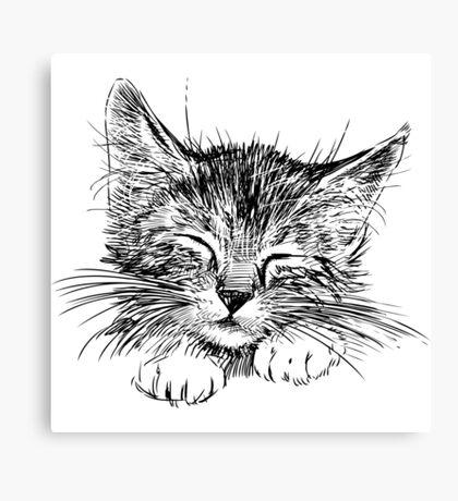 Cat animal Canvas Print