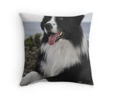 Yogi Bear Throw Pillow
