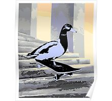 Duck on Board Poster