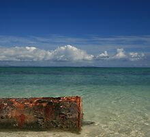 Rusted Drum by Paul Maher