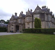 Muckross House Killarney Co Kerry by James Cronin