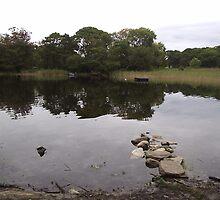 Killarney Lakes Killarney Co Kerry Ireland by James Cronin