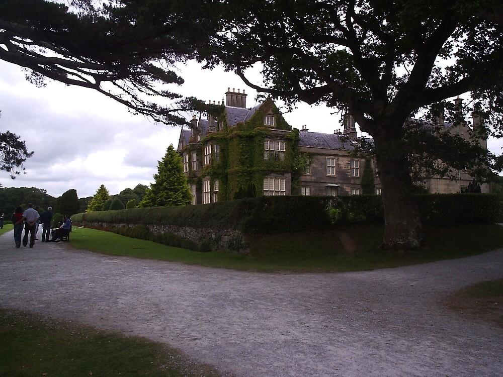Muckross House Killarney County Kerry Ireland by James Cronin