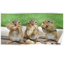 """Say """"Cheese"""" (or Peanuts) Poster"""