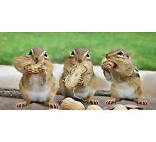 "Say ""Cheese"" (or Peanuts) Photographic Print"
