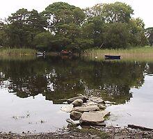 Killarney County Kerry by James Cronin