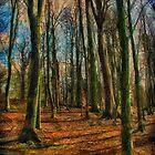 Woody Walk by Simon Duckworth