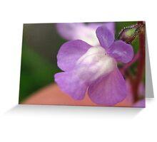 Weed Flower Greeting Card