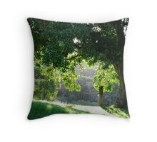 Willowvale Ambience Throw Pillow