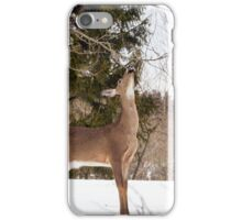 Deer Seeking Maple Syrup iPhone Case/Skin