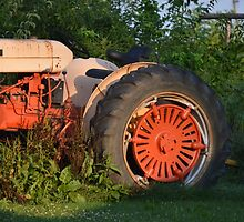 I LOVE MY TRACTOR by kathyholliker