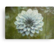 The Bloom is Greening Metal Print