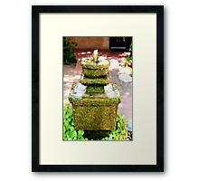 Fountain, Tucson, AZ Framed Print