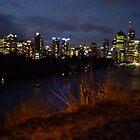 Gold Coast by thomasberryman