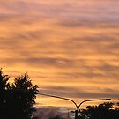 Yellow Sky by thomasberryman