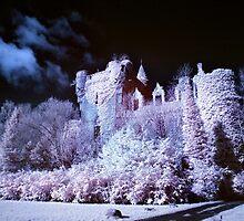 Buchanan Castle by Ward McNeill