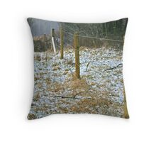 The snow fence Throw Pillow