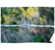 Barbed Poster