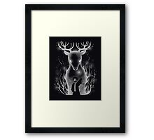 Harry and his patronus Framed Print