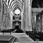 Cathedral in France by Darlene Virgin