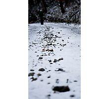 Going somewhere.. Photographic Print