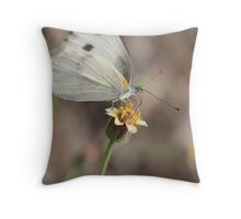 better fly Throw Pillow